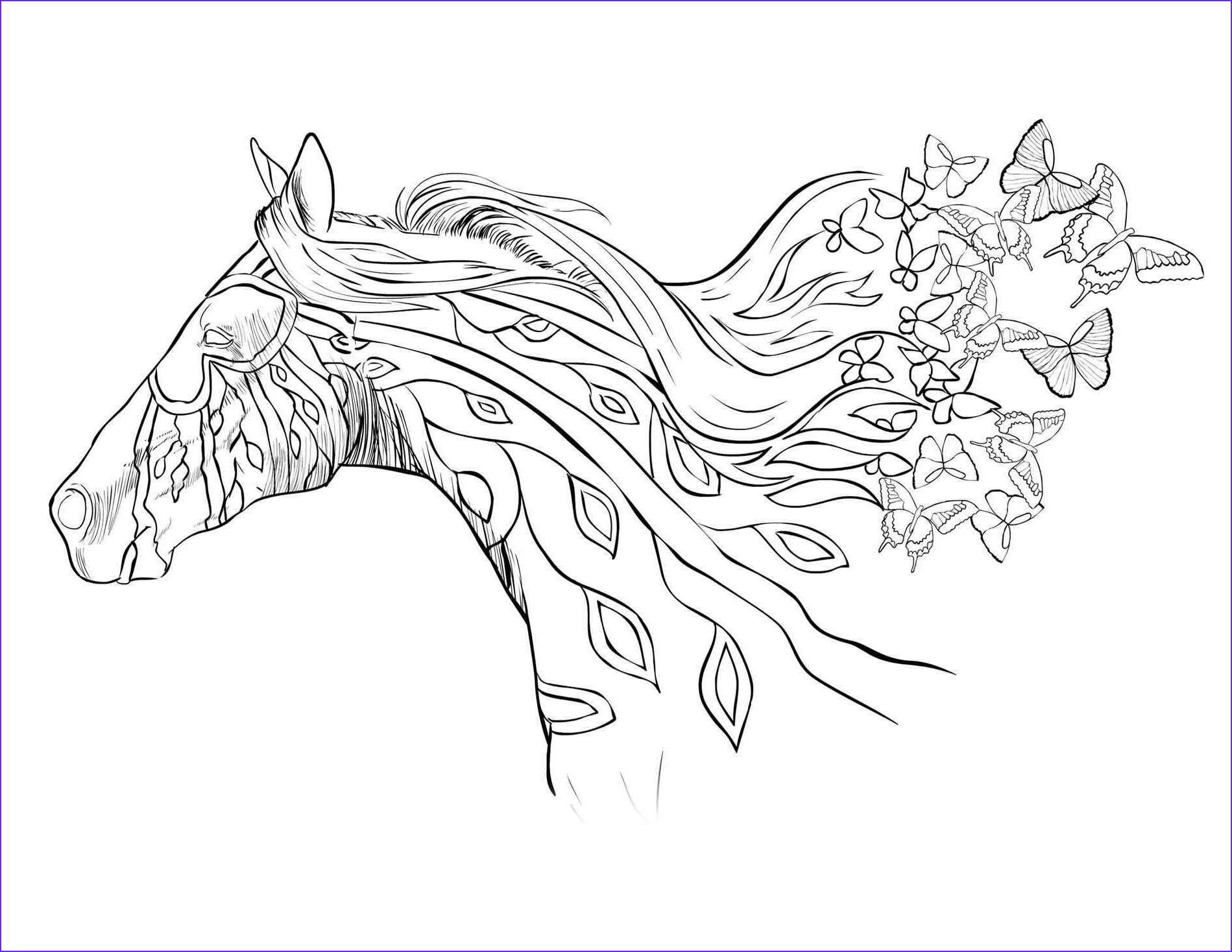 Adult Horse Coloring Book Beautiful Gallery Coloring Pages for Adults Horses at Getcolorings