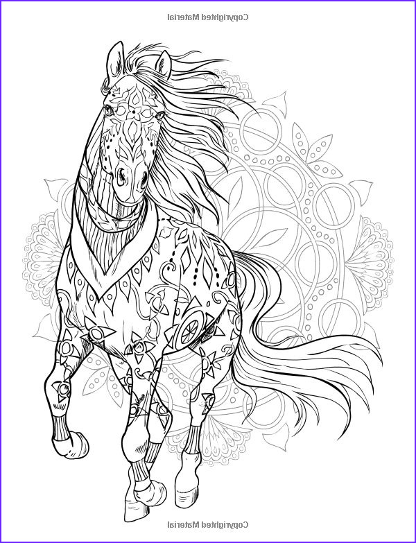 Adult Horse Coloring Book Inspirational Photography Robot Check