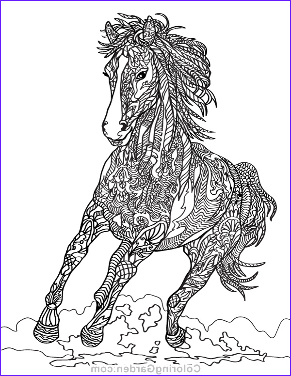 Adult Horse Coloring Book New Images Horse Adult Coloring Page