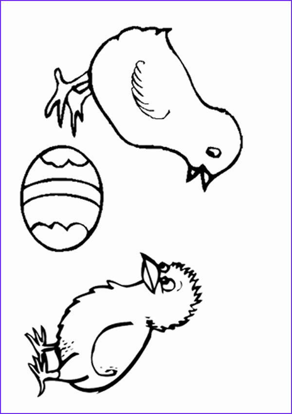 28 baby chick coloring page