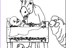Baby Jesus Coloring Page for Preschoolers New Photos 84 Best Images About Printable Coloring Artwork for