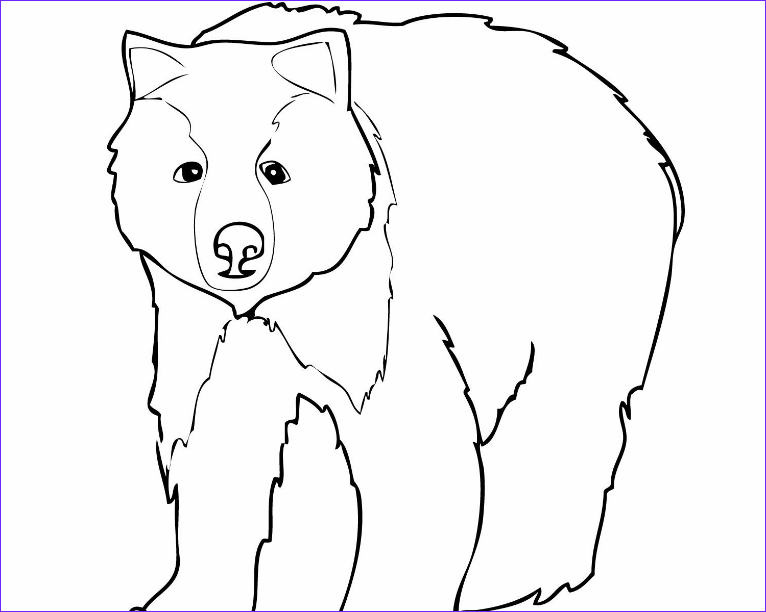 Black Bear Coloring Page Beautiful Gallery Coloring Pages Black Bear At Getcolorings