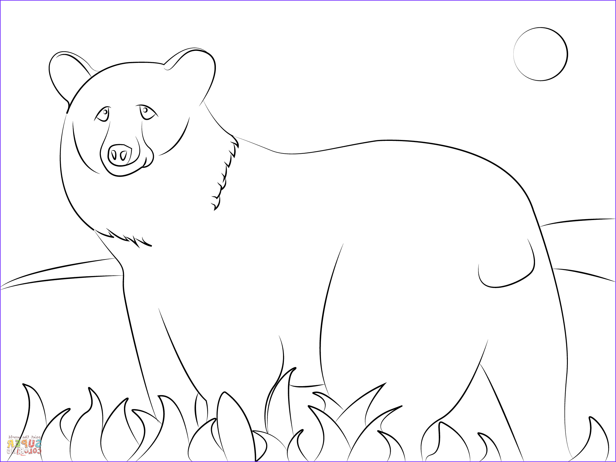 Black Bear Coloring Page Best Of Photos American Black Bear Coloring Page