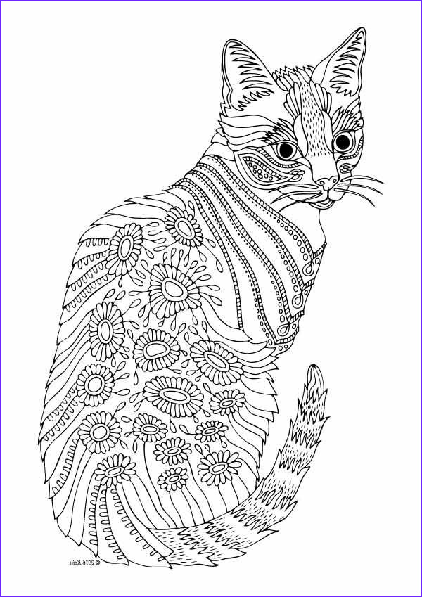 Cat Adult Coloring Page New Images Cat Coloring Pages for Adults Part 6