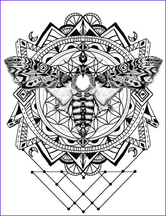 Color Art Coloring Book Best Of Photography Pin On Calming Coloring Books