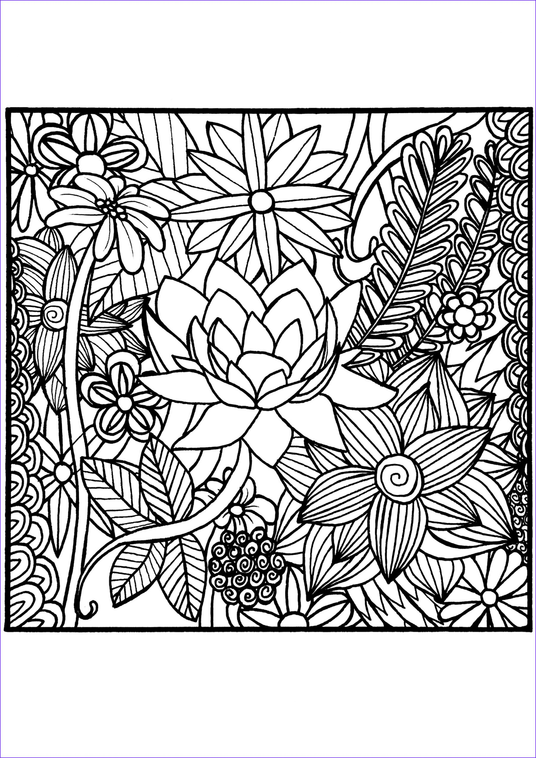Color Coloring Book Luxury Gallery Flowers In A Square Flowers Adult Coloring Pages