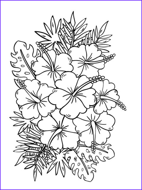 Coloring Book for Adults Flowers Awesome Collection Fanciful Flowers Adult Coloring Book Designs Myria