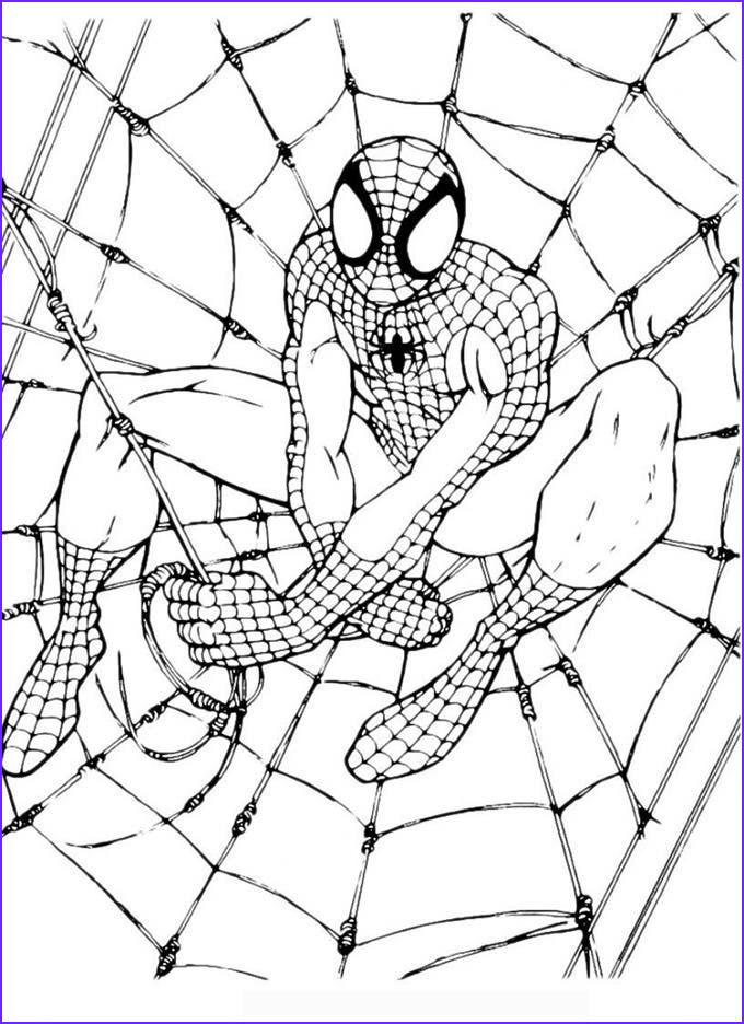 Coloring Page Of Spiderman Elegant Images 30 Spiderman Colouring Pages Printable Colouring Pages