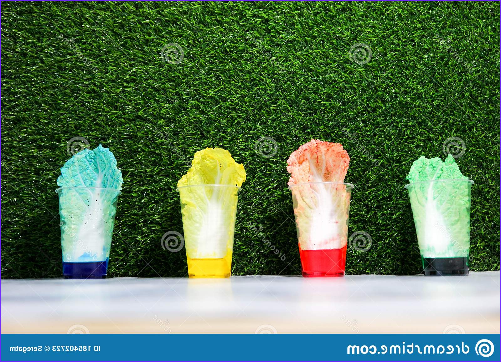 Cool Experiments with Food Coloring Cool Photos Cool and Fun Science Experiment for School Children Kids