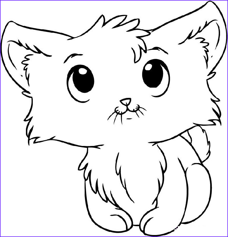 kitten coloring pages able