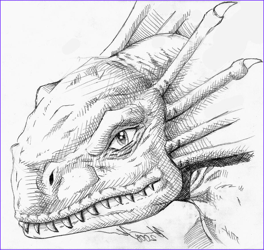 Dilophosaurus Coloring Page Best Of Gallery Dilophosaurus Dinosaur Coloring Pages Sketch Coloring Page