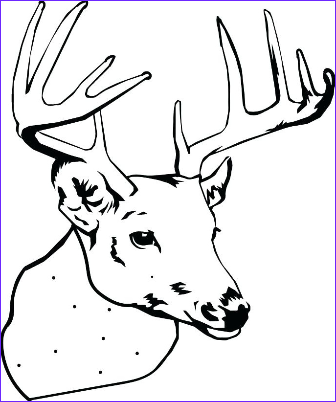 doe coloring pages