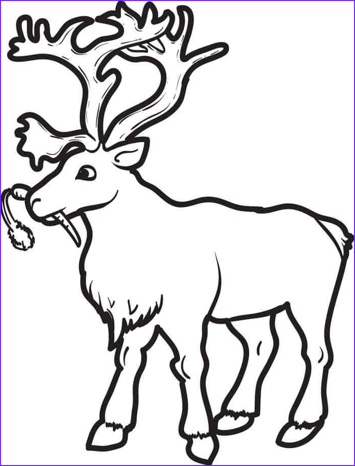 Free Printable Deer Coloring Page Unique Stock Deer Coloring Pages In 2020