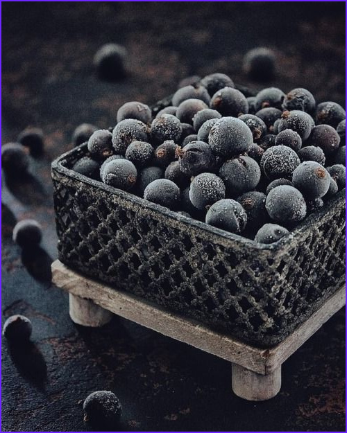 Gray Food Coloring New Photography Pin By Merry Anne Summerford On Blueberry Color Mix