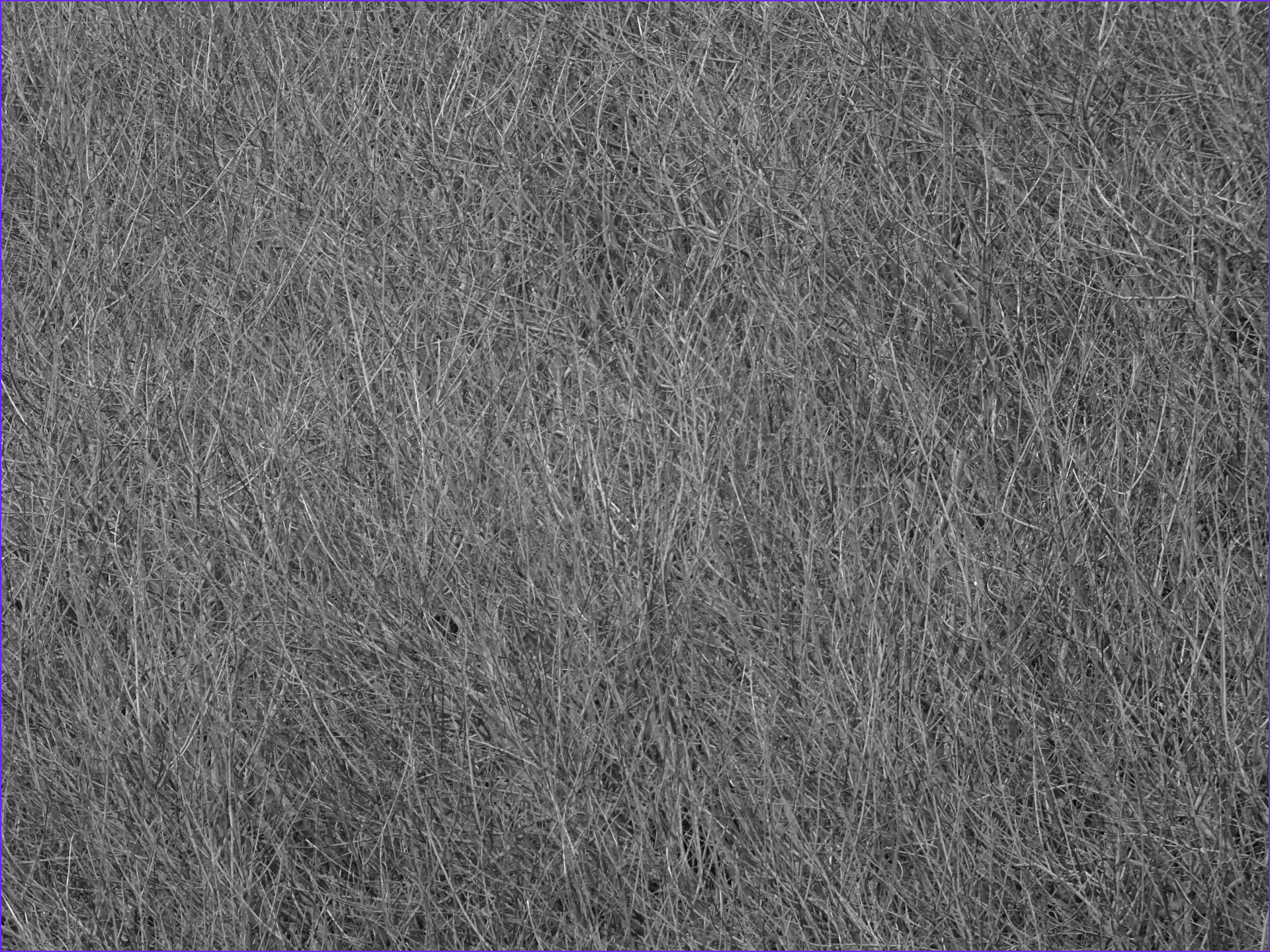 view image image= &picture=gray texture background