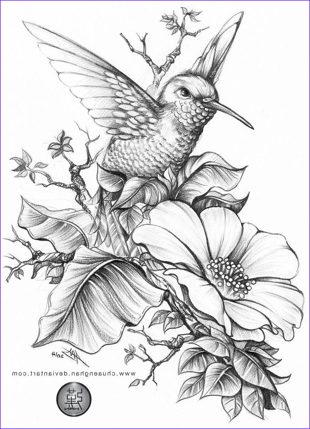 Hummingbird Coloring Page For Adults New Photos Hummingbird By Chuaenghanviantart On Deviantart
