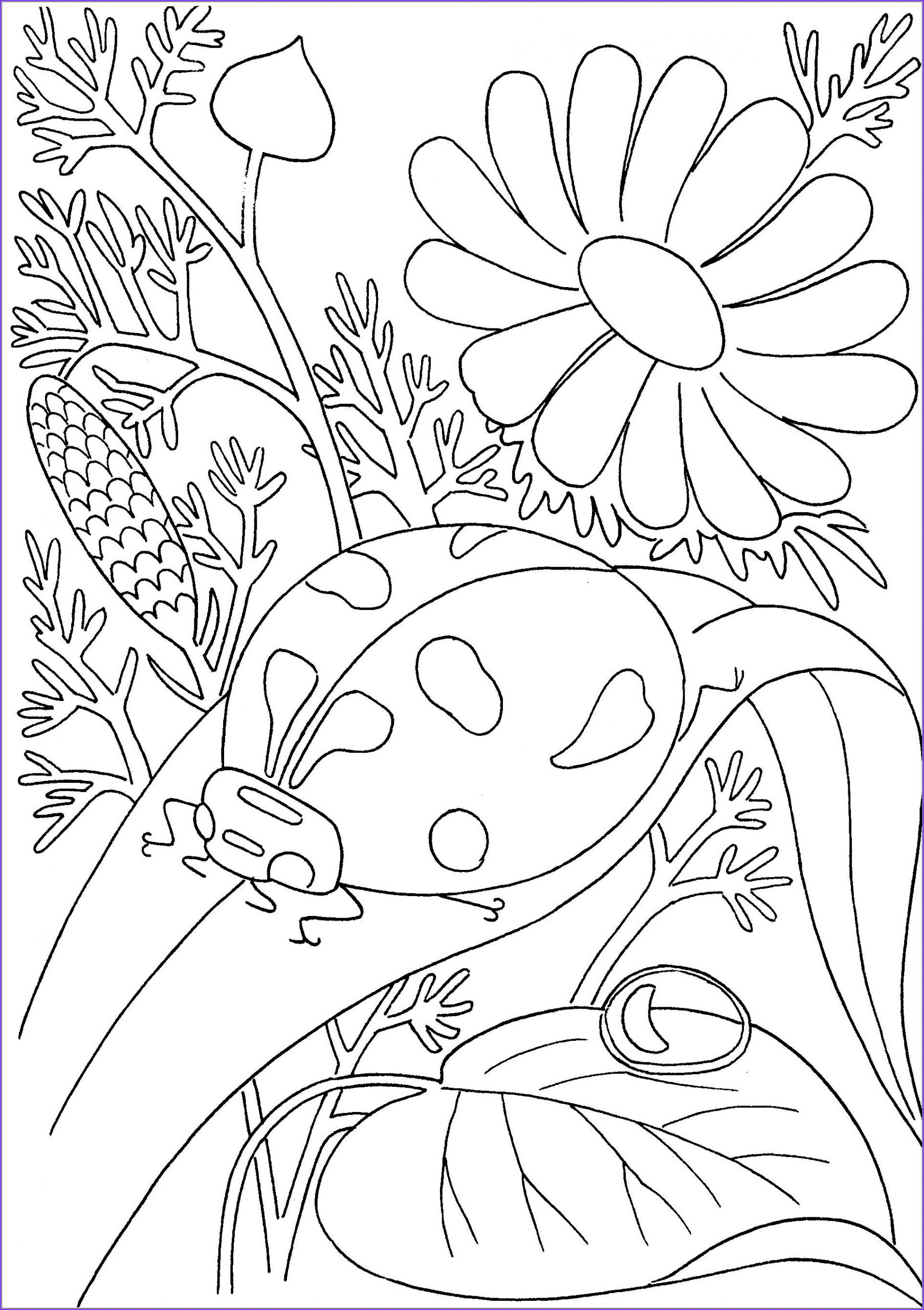 Insects Coloring Book Inspirational Photos Insects to Color for Kids Insects Kids Coloring Pages