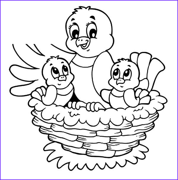 Nest Coloring Page Cool Collection Cartoon Birds Nest Coloring Home Sketch Coloring Page