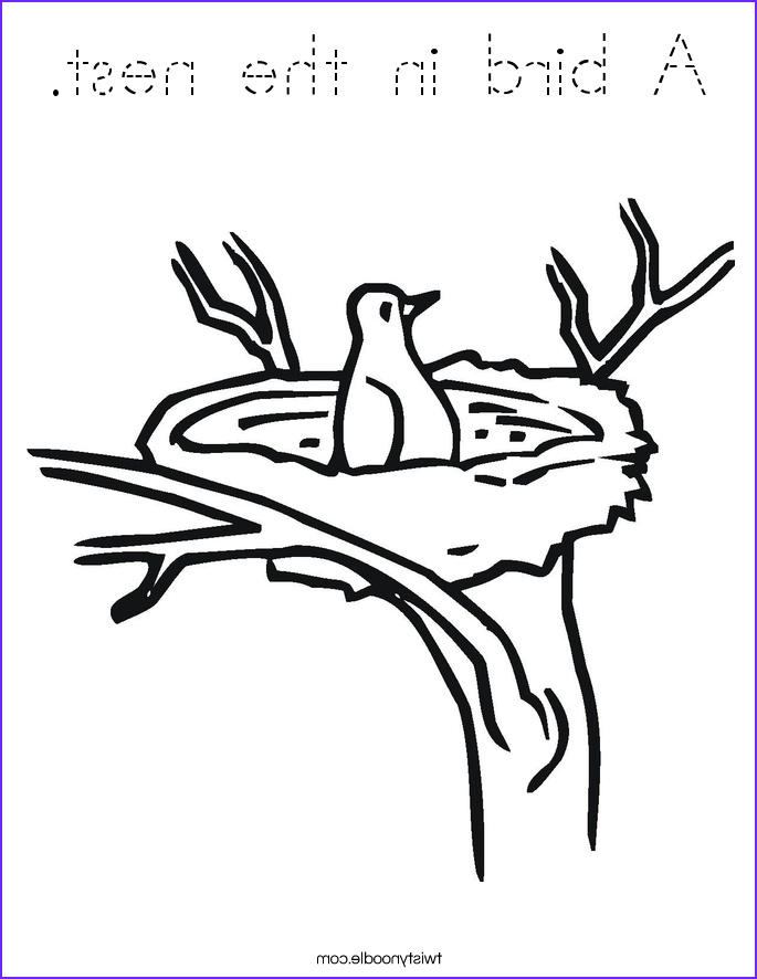 Nest Coloring Page Elegant Photos A Bird In the Nest Coloring Page Tracing Twisty Noodle