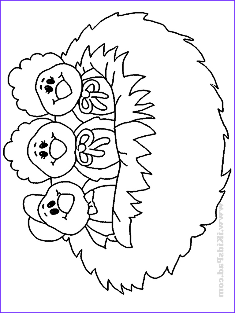 Nest Coloring Page Inspirational Photography Nest Coloring Page Coloring Home