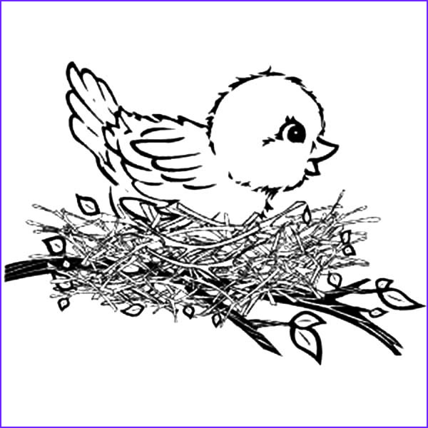 Nest Coloring Page Luxury Images Find the Best Coloring Pages Resources Here Part 68