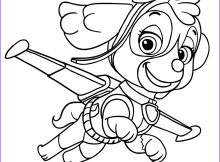 Paw Patrol Skye Coloring Page Awesome Photos Scarica Immagine Paw Patrol Da Colorare Line Scarica
