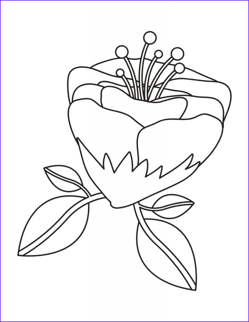 fun and pretty coloring pages for adults with flowers and leaves