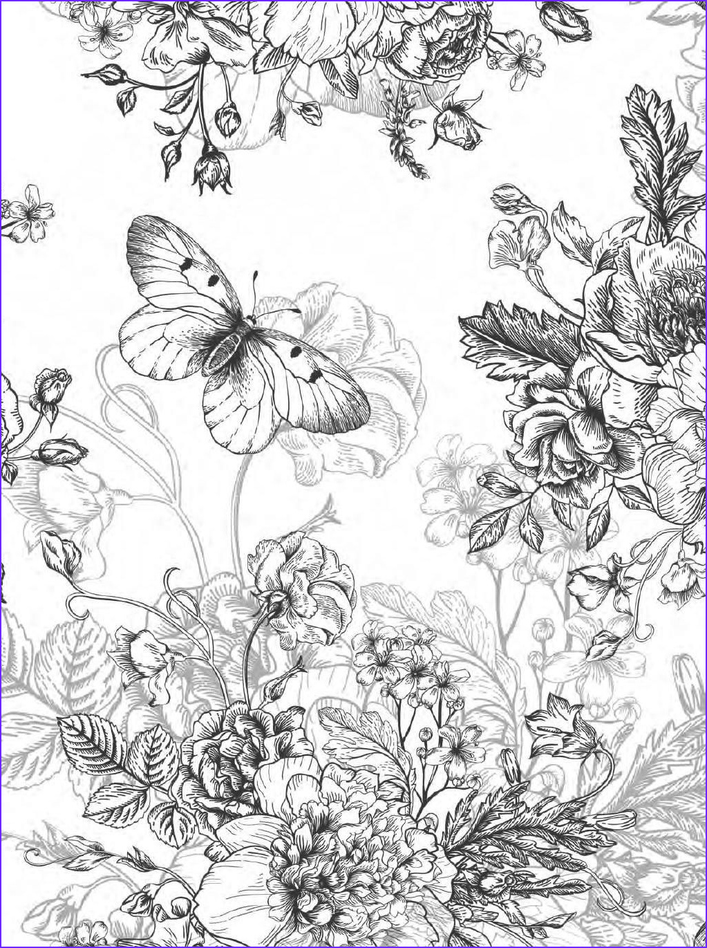 Pretty Flower Coloring Page Elegant Image Beautiful Flowers Detailed Floral Designs Coloring Book