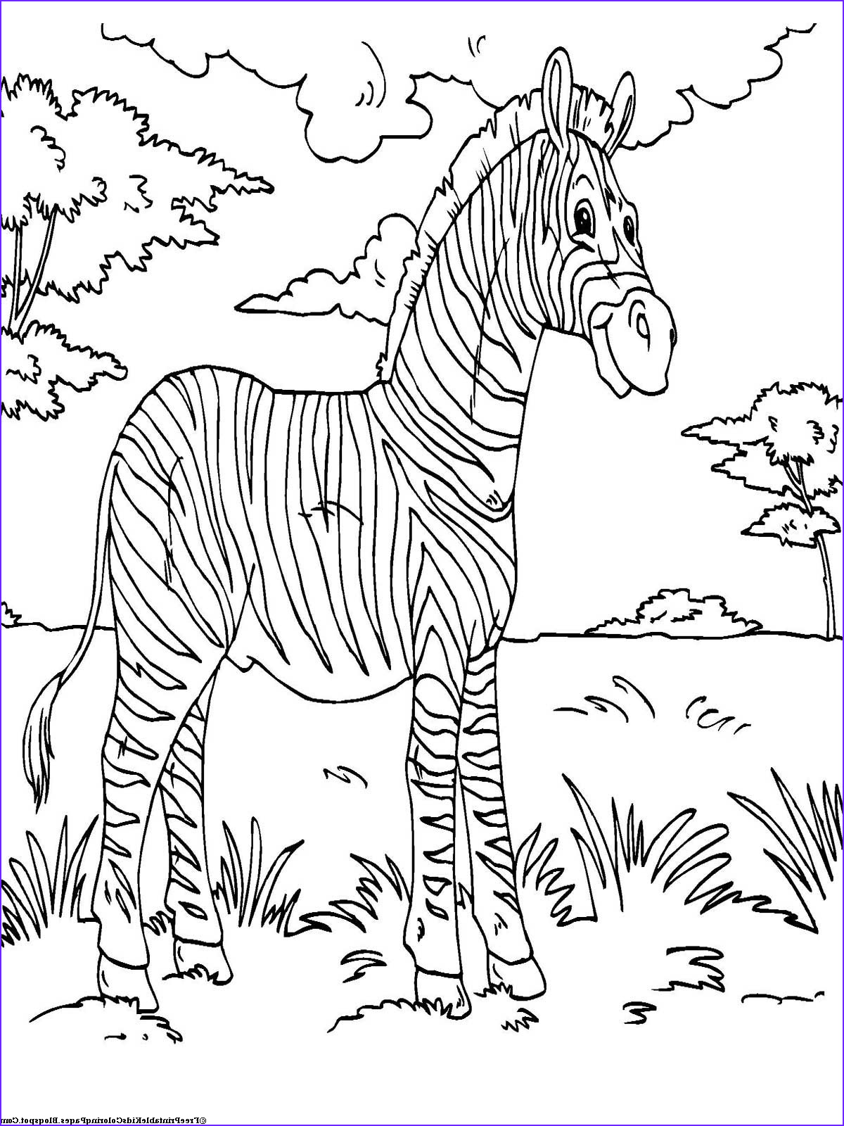 Printable Coloring Page Of Animals Luxury Stock Zebra Coloring Pages Free Printable Kids Coloring Pages
