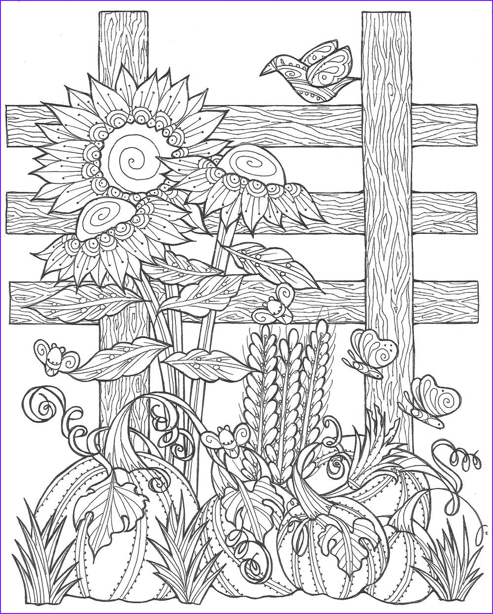 Pumpkin Patch Coloring Page Printable New Photography Sunflower Pumpkin Patch Coloring Page Pdf