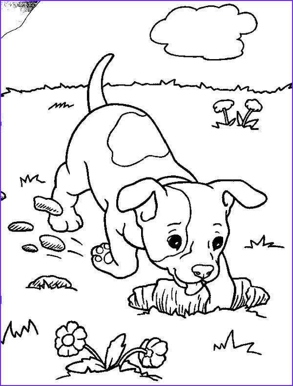 Puppy Coloring Picture Unique Photos 9 Puppy Coloring Pages Jpg Ai Illustrator Download