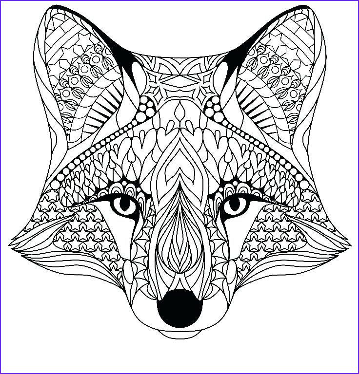 Red Coloring Sheet Cool Photos Red Fox Coloring Page at Getcolorings