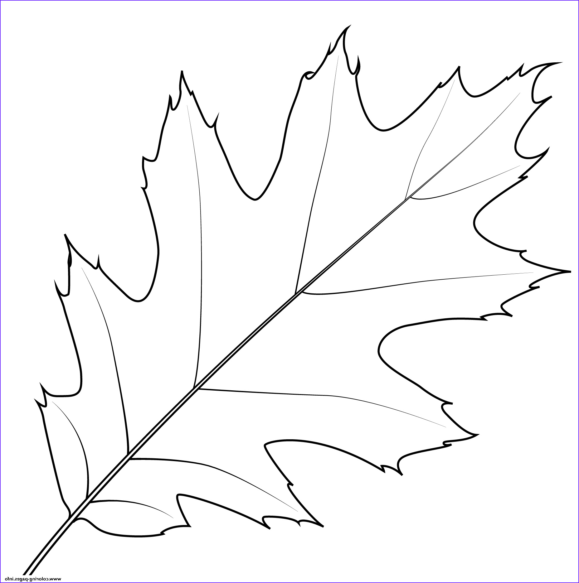 Red Coloring Sheet New Photos northern Red Oak Leaf Coloring Pages Printable