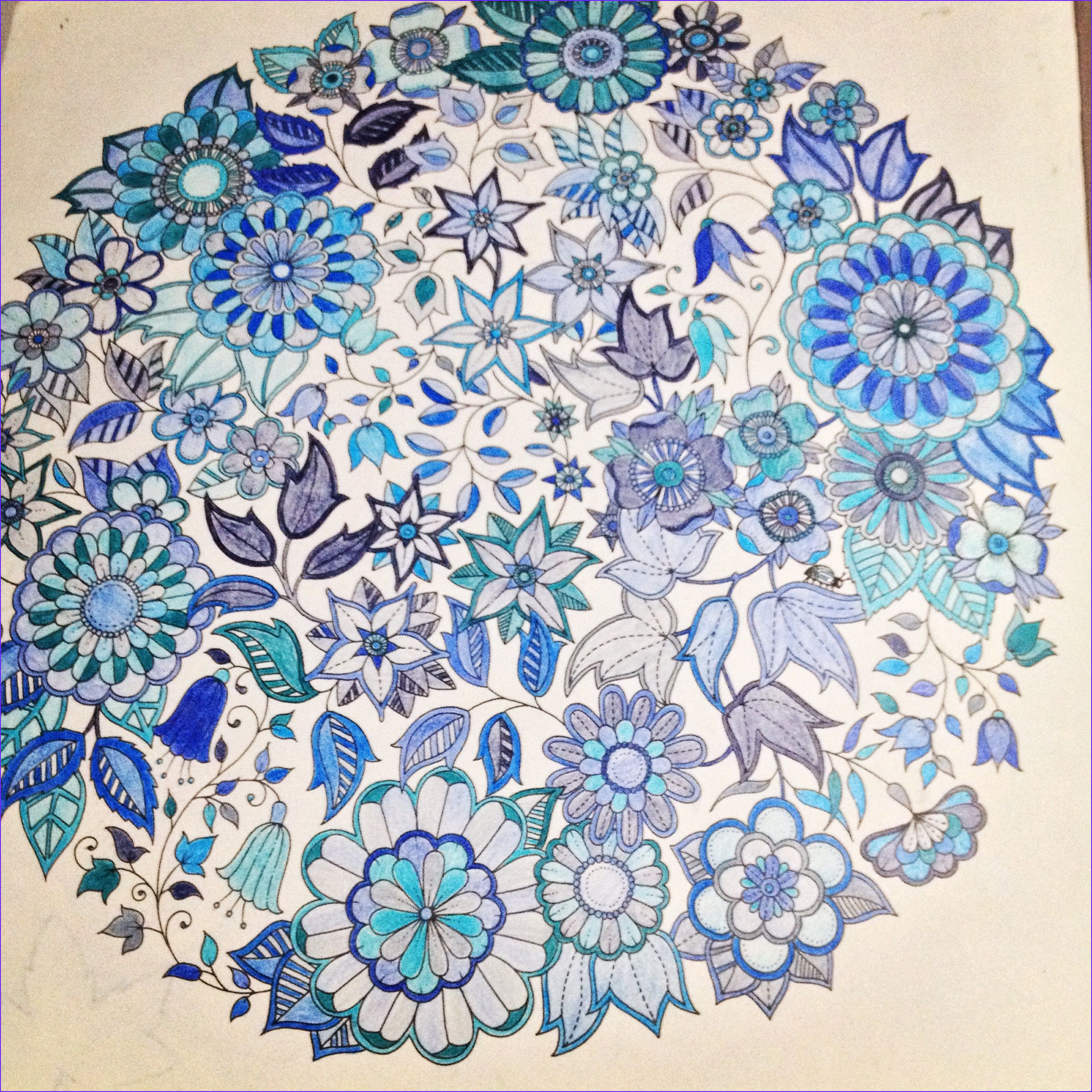 Secret Garden Coloring Page Finished Beautiful Gallery My Finished Page From Johanna Basford Secret Garden