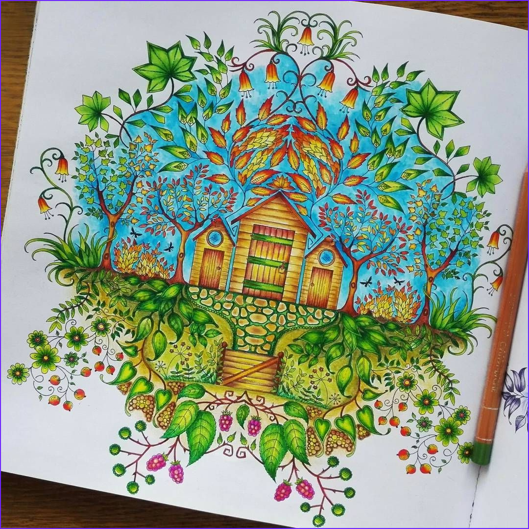 Secret Garden Coloring Page Finished Beautiful Images Finished Page In Secret Garden Coloringbook
