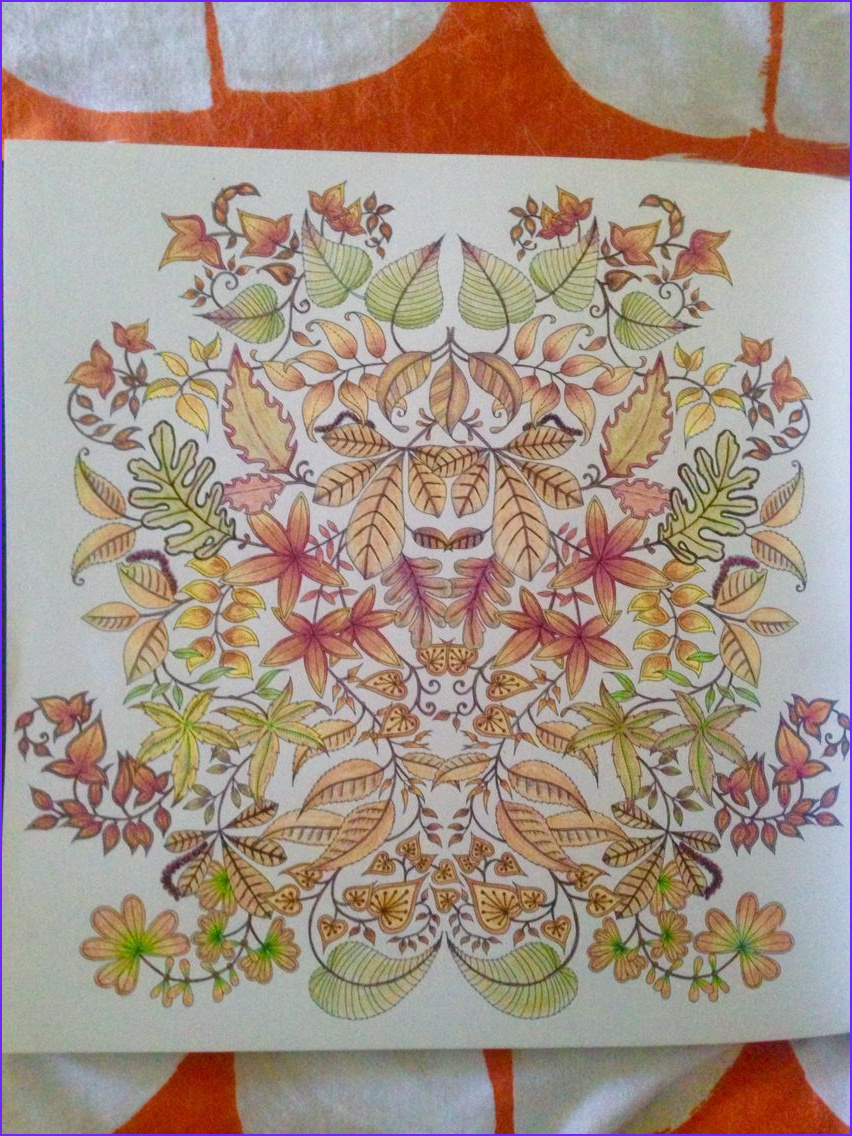 Secret Garden Coloring Page Finished Beautiful Photography From Johanna Basford S Secret Garden Finished 2 11 16