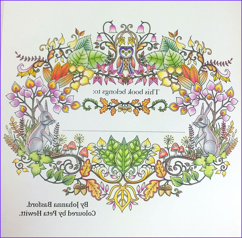 Secret Garden Coloring Page Finished Cool Collection Enchanting Pictures Of Enchanted Forest My First Finished