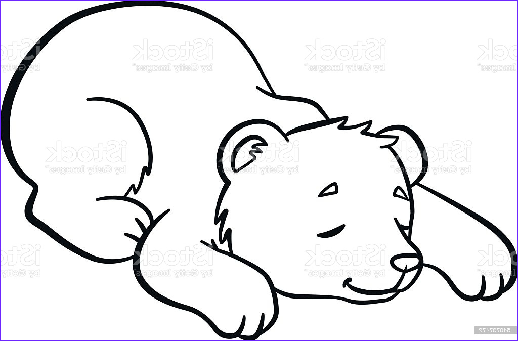 Sleeping Bear Coloring Page Best Of Images Coloring Pages Wild Animals Little Cute Baby Bear Sleeps