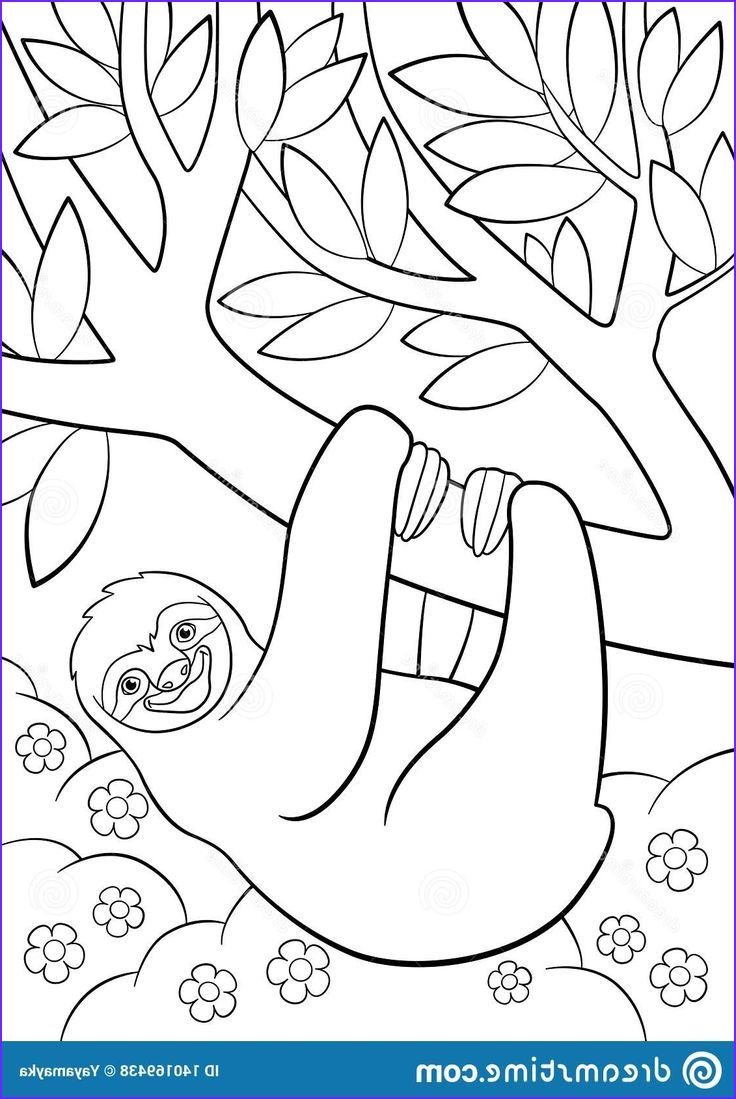 Sloth Coloring Book Cool Images Pin By Kate Linahan On 0 Animals Sloths In 2020