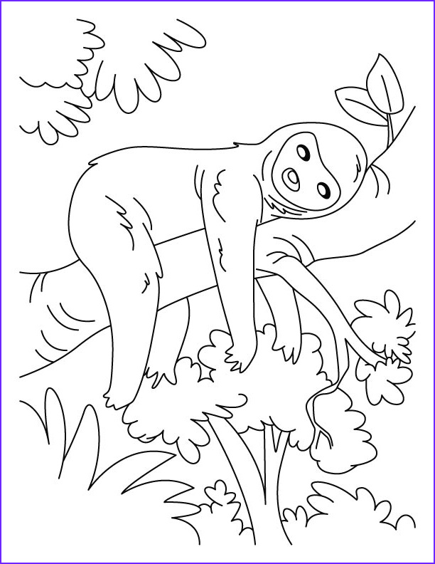 lazy sloth coloring pages 1d705
