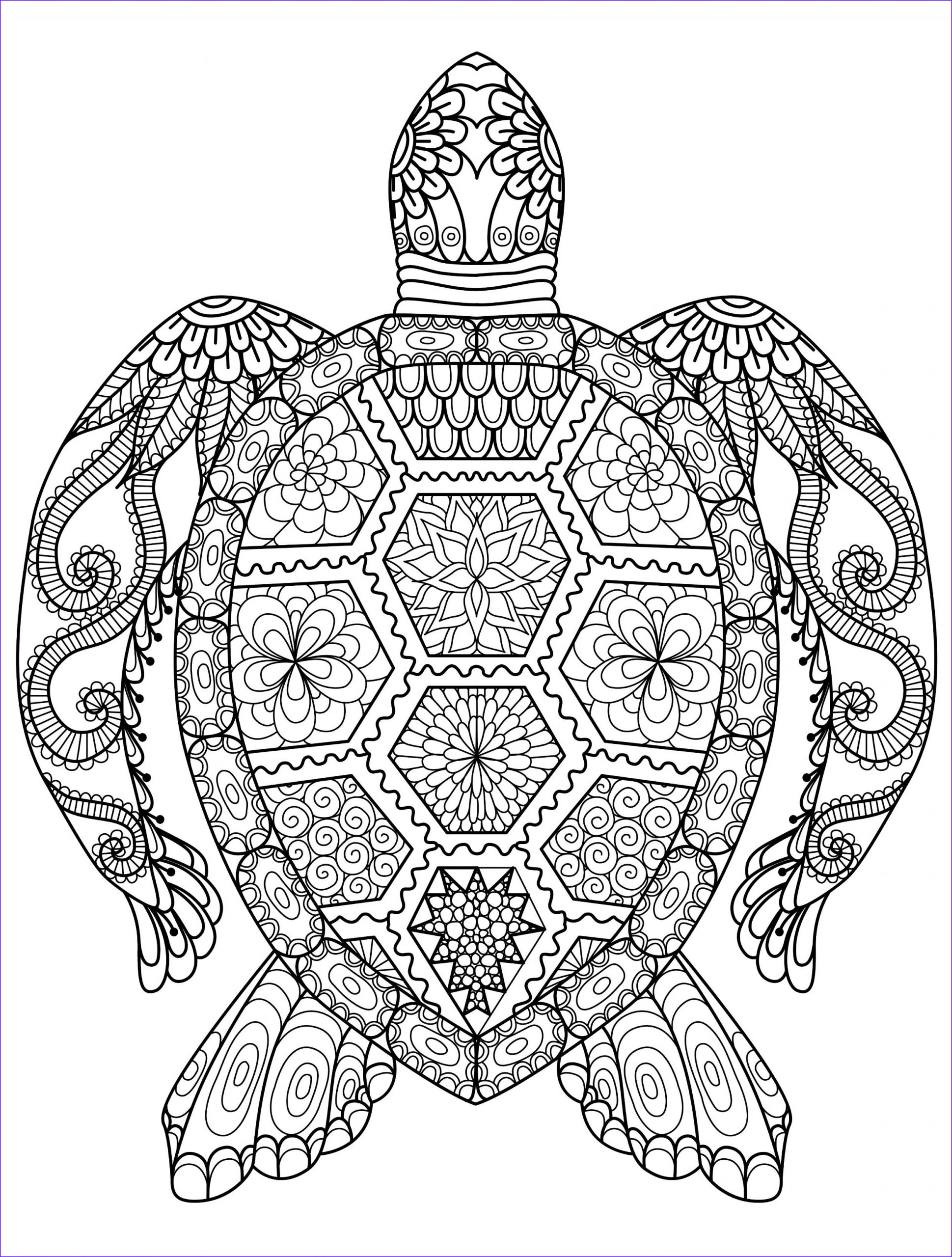 latest sloth coloring pages for adults