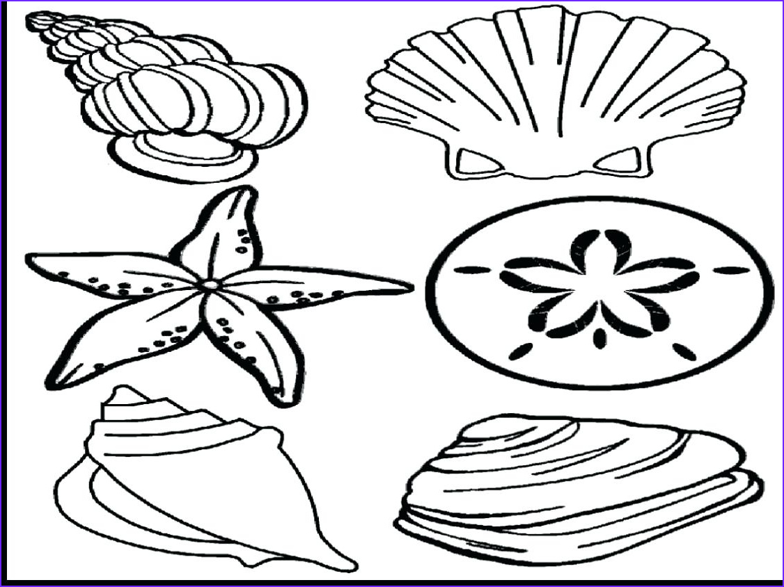 Sunrise Coloring Page Beautiful Stock Coloring Pages Sunrise At Getcolorings
