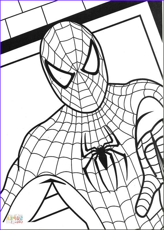 The Amazing Spider Man Coloring Page Luxury Images the Amazing Spider Man 2 Coloring Page