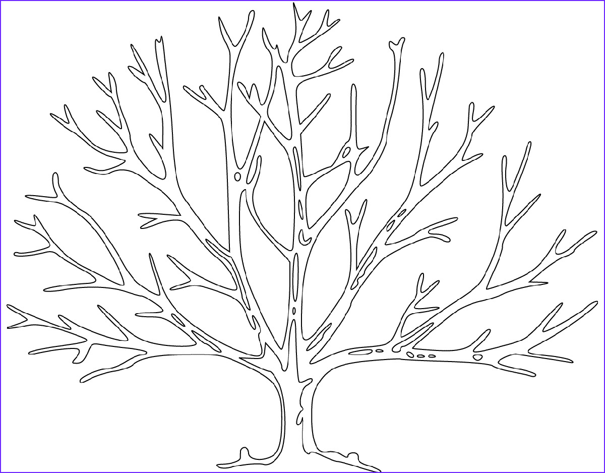 Tree Coloring Sheet Beautiful Image Bare Tree Coloring Page Usable