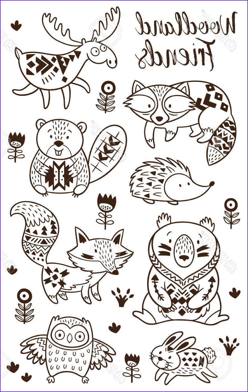 Woodland Animals Coloring Page Unique Stock Stock Vector