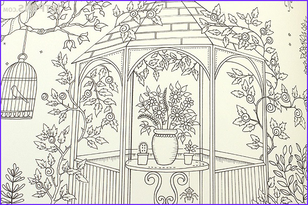 Coloring Book By Johanna Basford Awesome Photos Secret Garden An Inky Treasure Hunt And Coloring Book