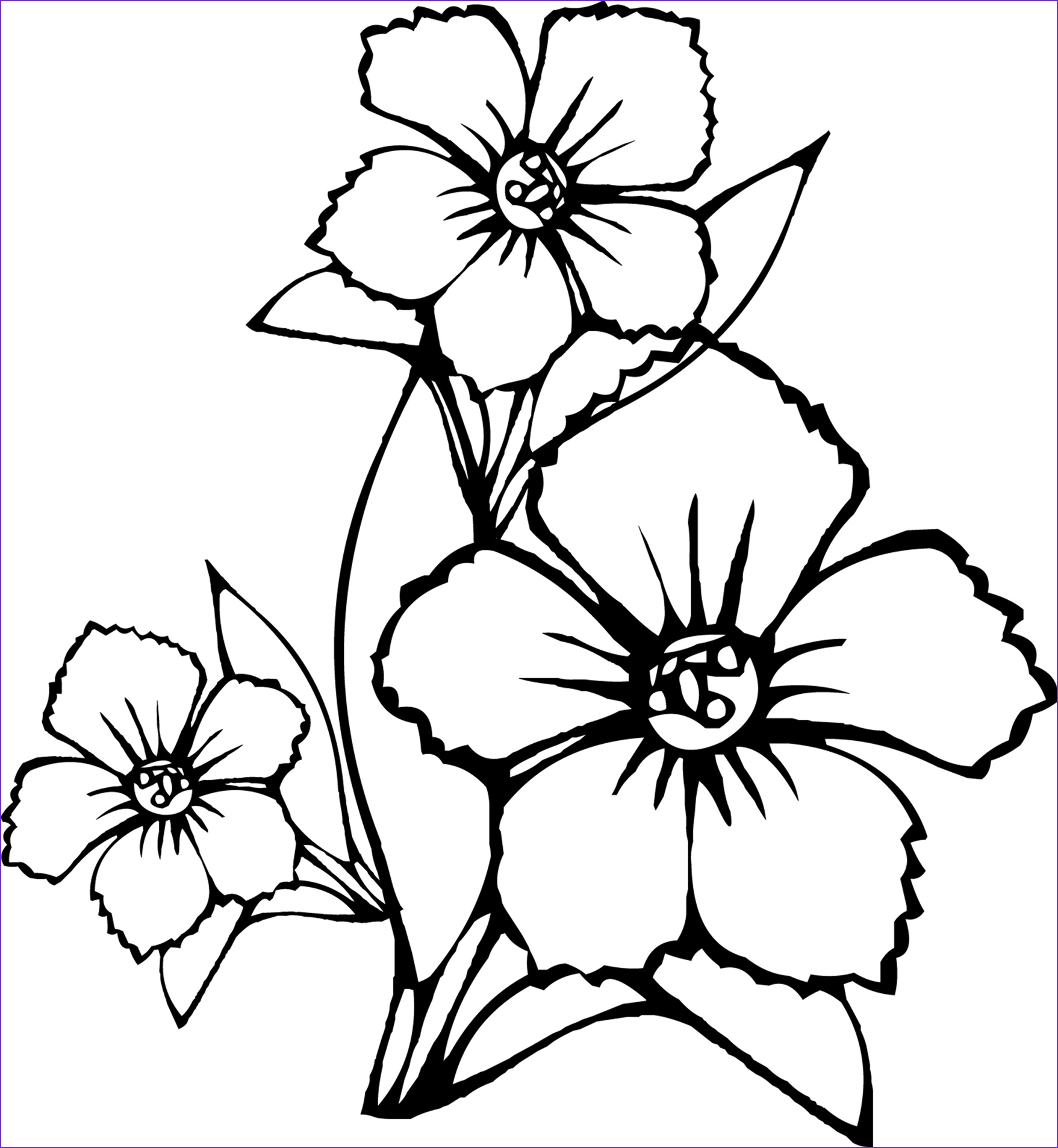 free printable flower coloring pages kids