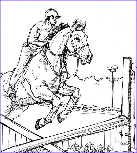Horse Jumping Coloring Page Beautiful Photography Horses Jumping Coloring Pages