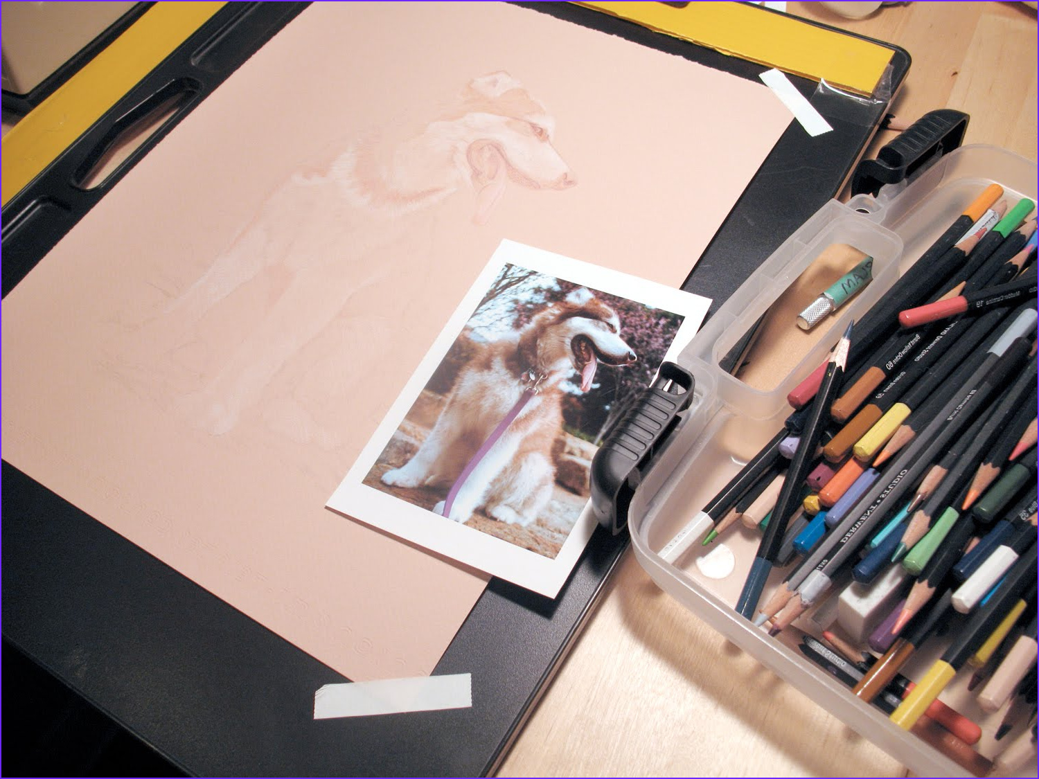 New Coloring Techniques Cool Photography Drawings Anatomy and Other Obsessions Color Pencil
