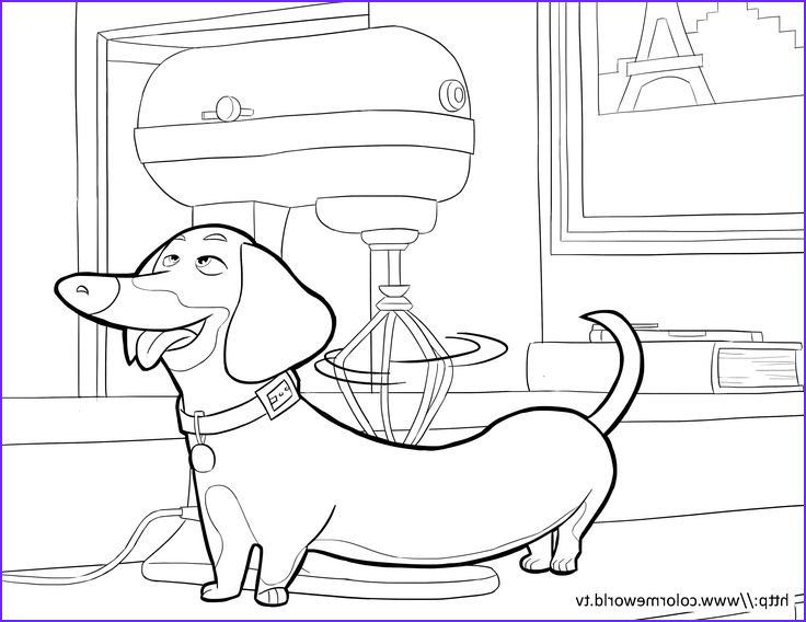 The Secret Life Of Pets Coloring Page Beautiful Stock Buddy Pdf Printable Coloring Page The Secret Life Of